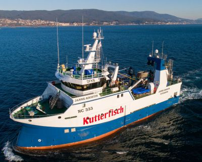 Kutterfisch